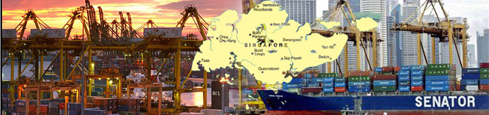 Major Coir Importers in Singapore | Coirboard